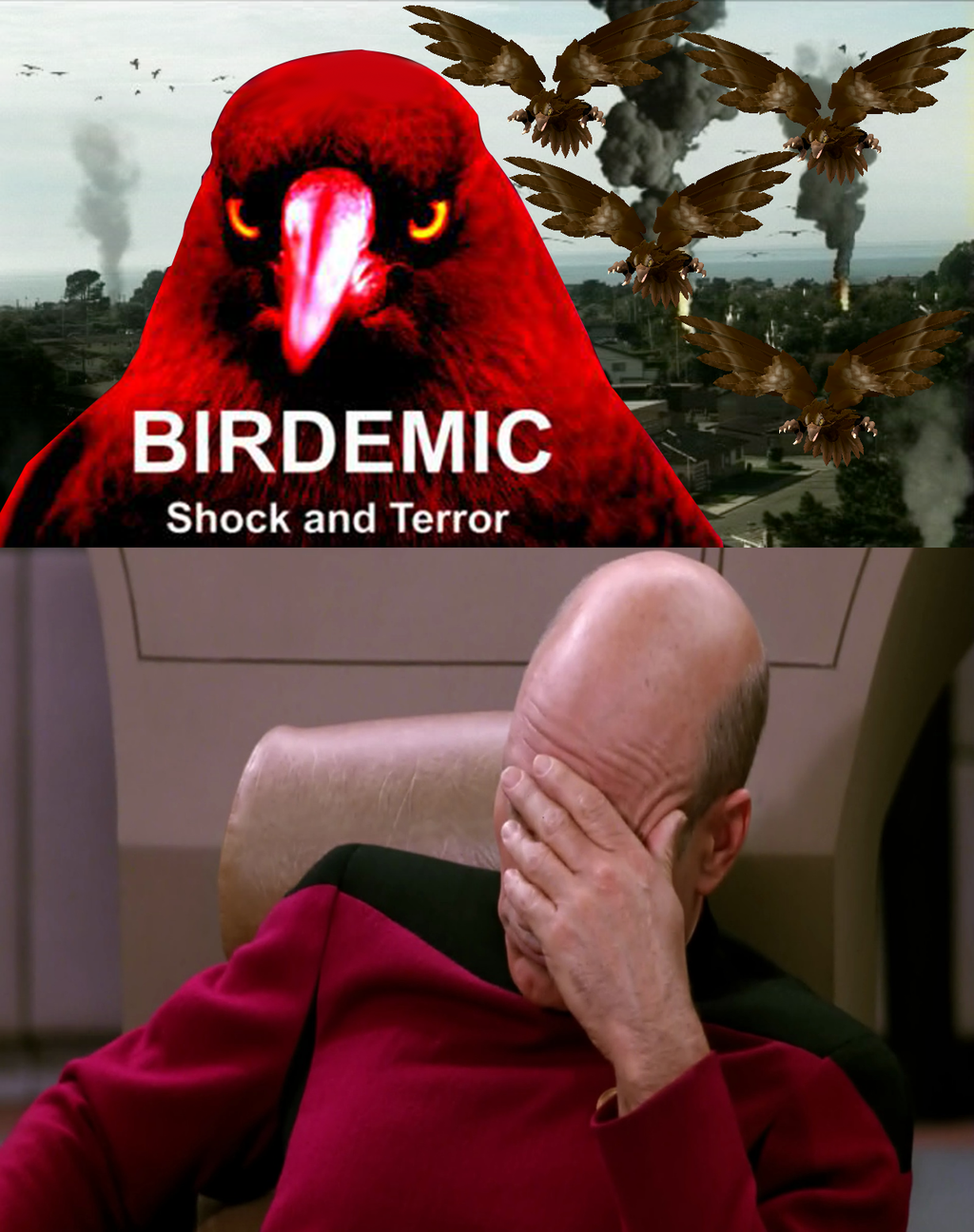 my_reaction_birdemic_meme_2_by_nickanater1-d8tx664
