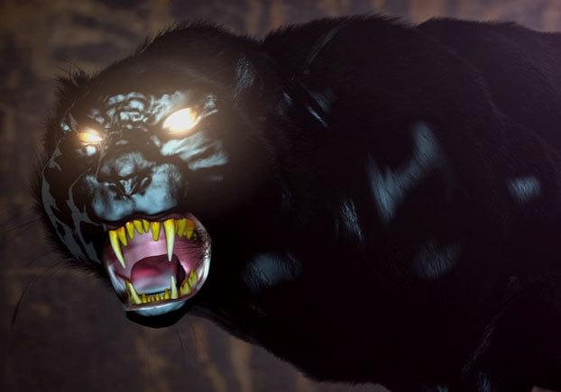 wampus-cat
