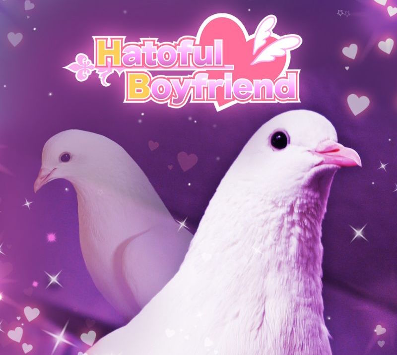 308197-hatoful-boyfriend-playstation-4-front-cover