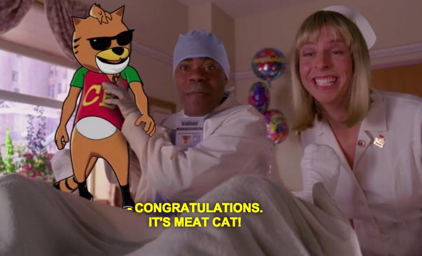 Meat Cat