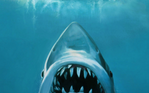 The Horror of Jaws: Stay out of the Water!